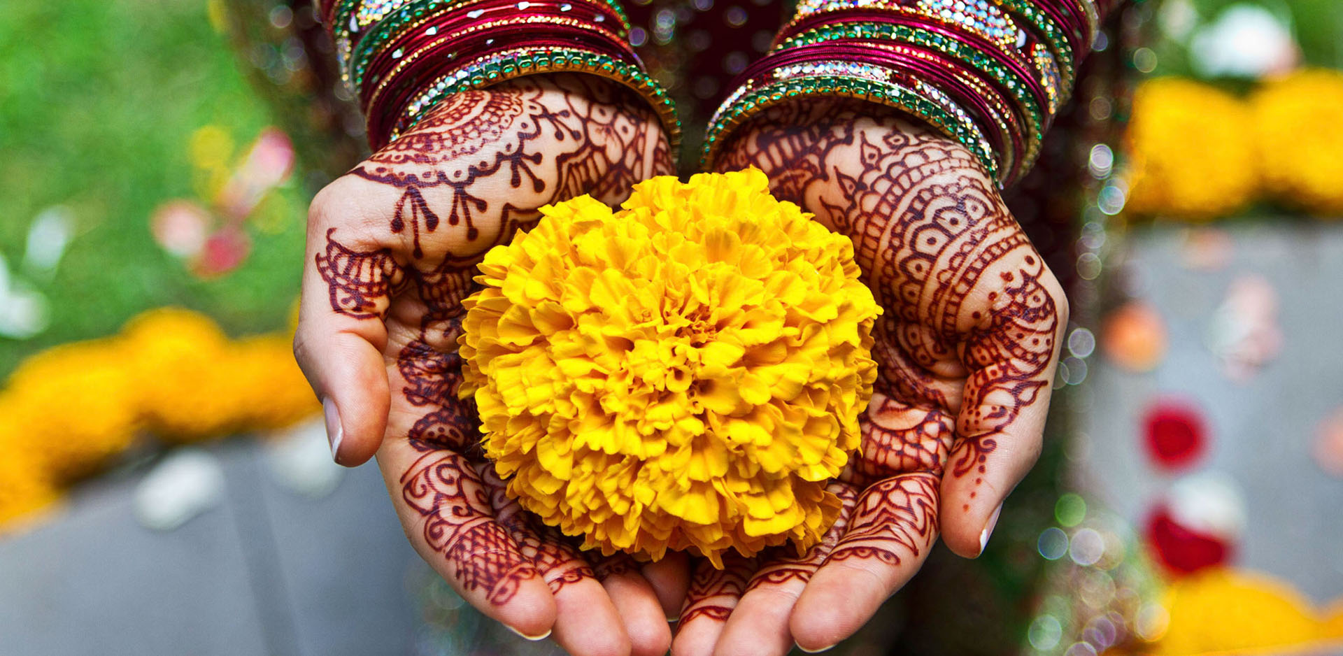 Bride holding yellow carnation flower in hands covered in henna