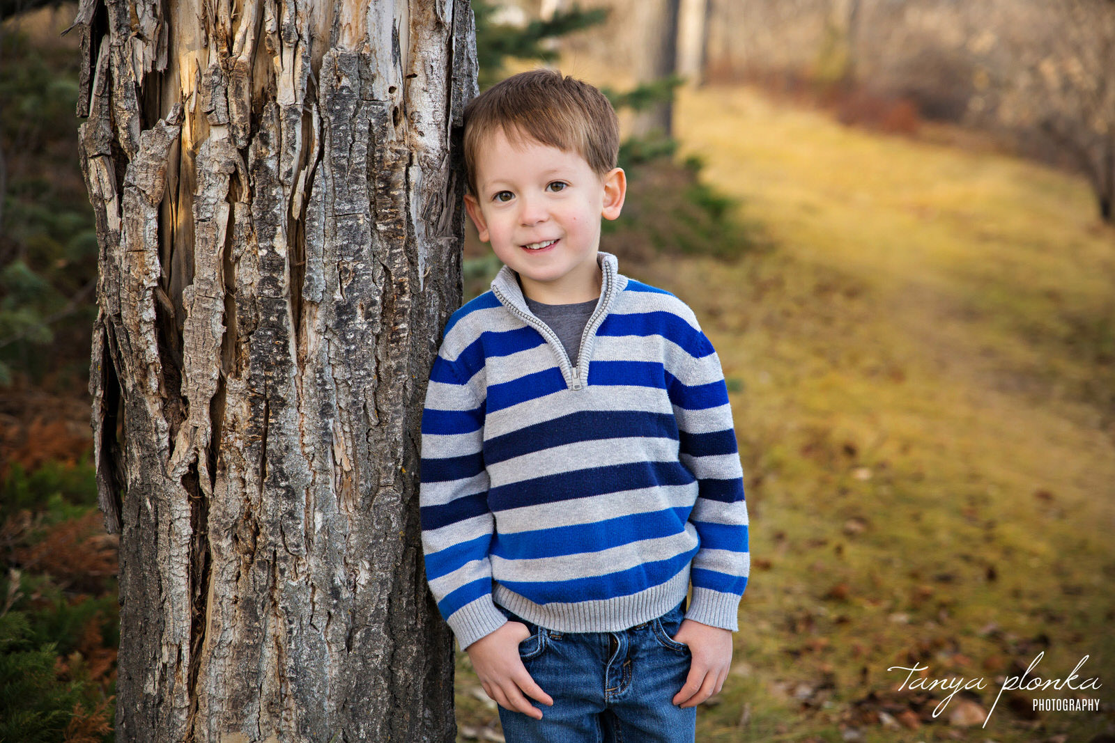 young boy in striped sweater leaning against tree in Aperture Park