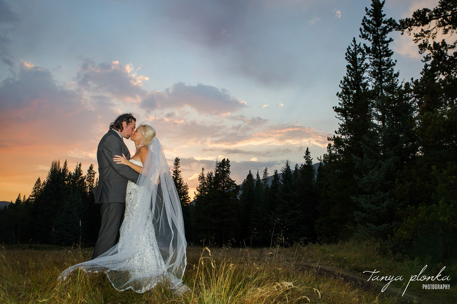 bride and groom kiss in the forest at night while twilight lights the sky in blue and pink