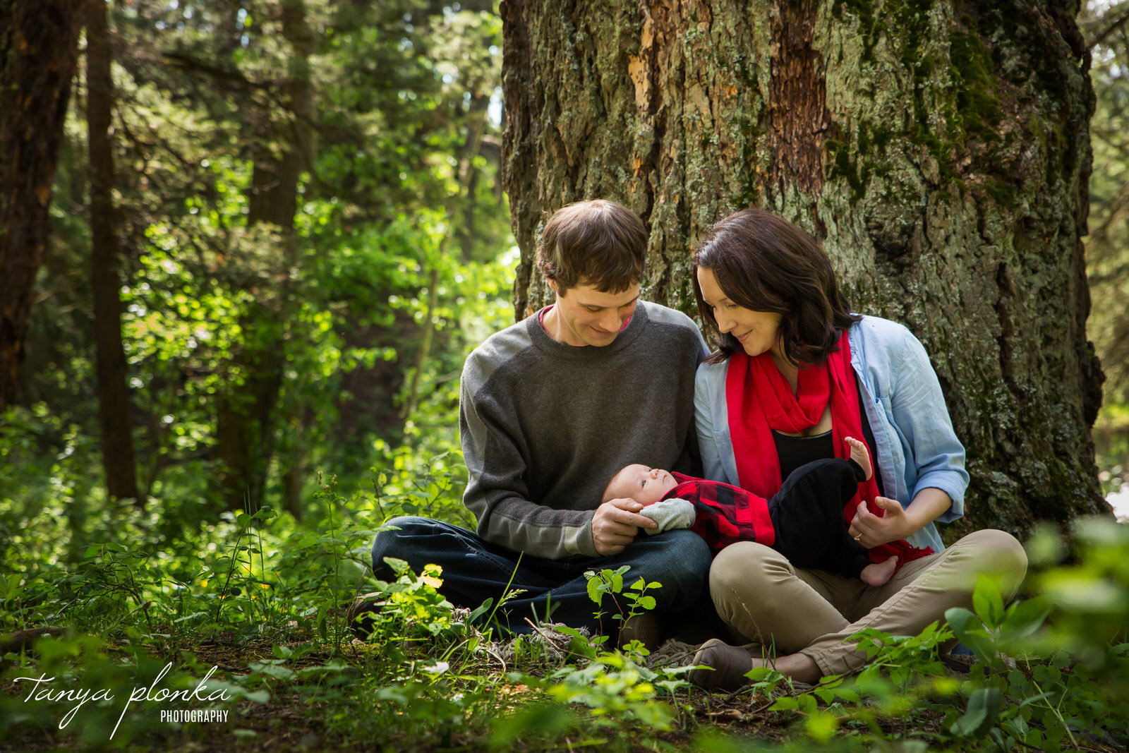 mom and dad sit below large tree in forest while holding newborn baby