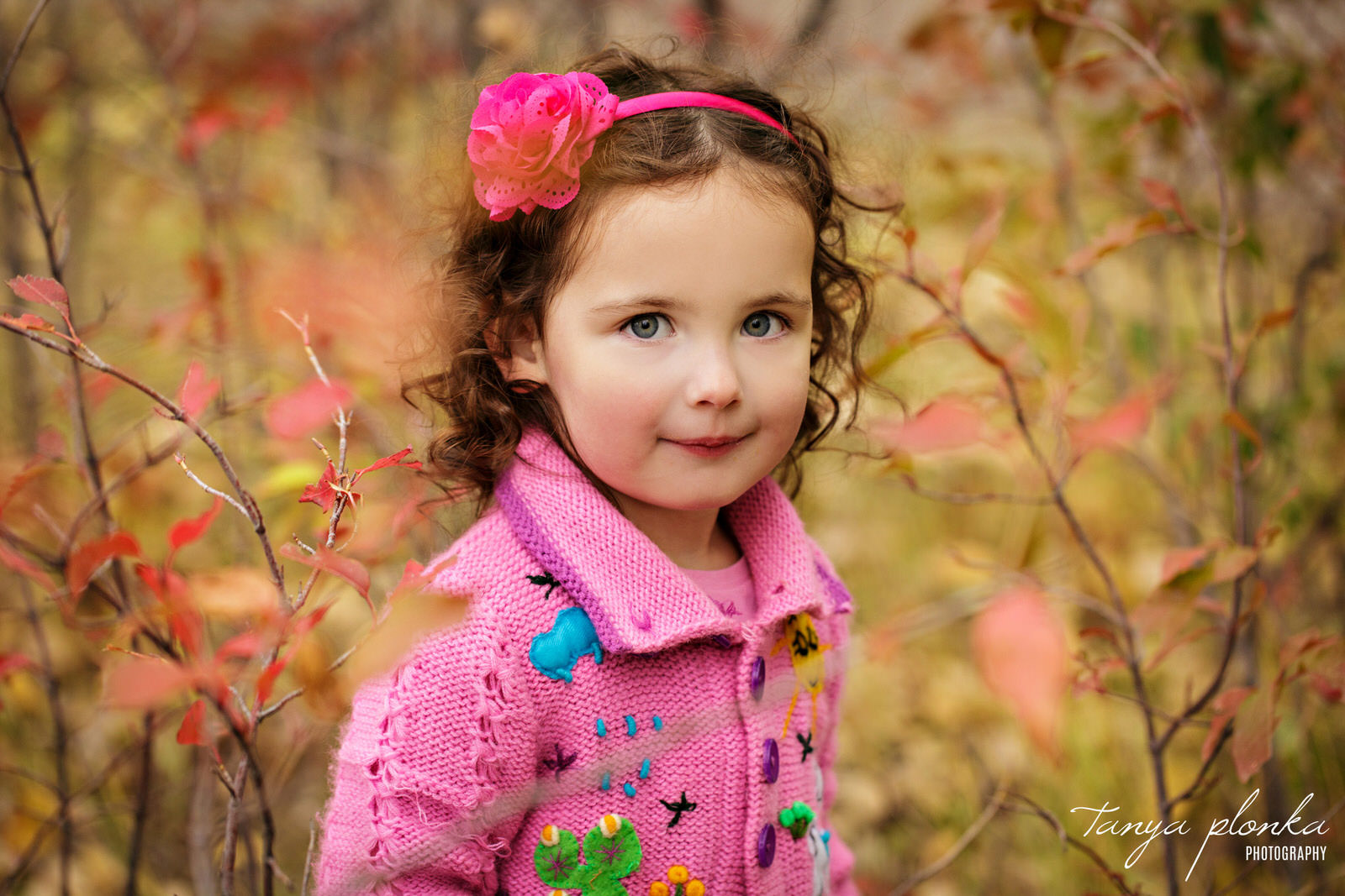 young girl in pink sweater surrounded by red autumn leaves in Lethbridge