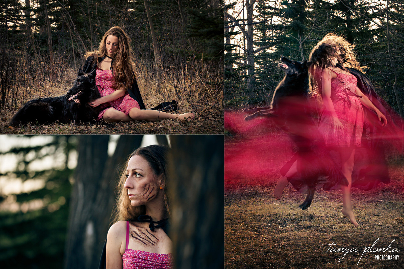 triptych of woman in red dress posing with black Belgian shepherd, floating in air with dog, and standing behind tree with scratch mark special effects makeup