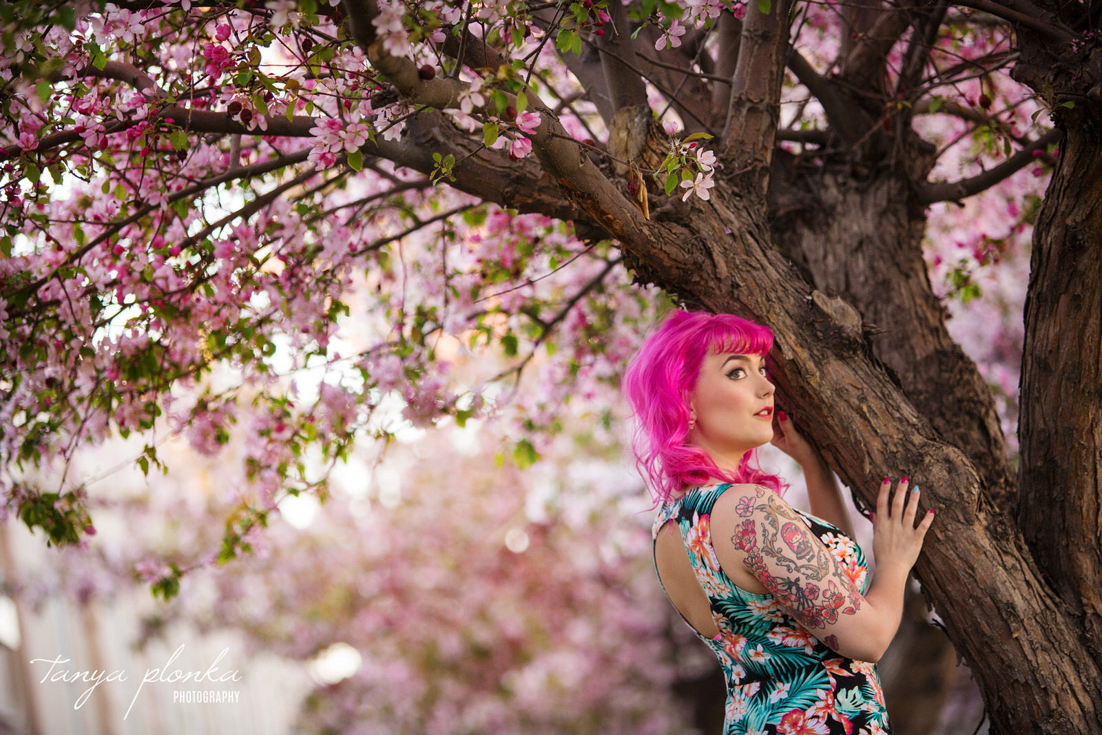 woman with pink hair leans against tree with pink spring blossoms