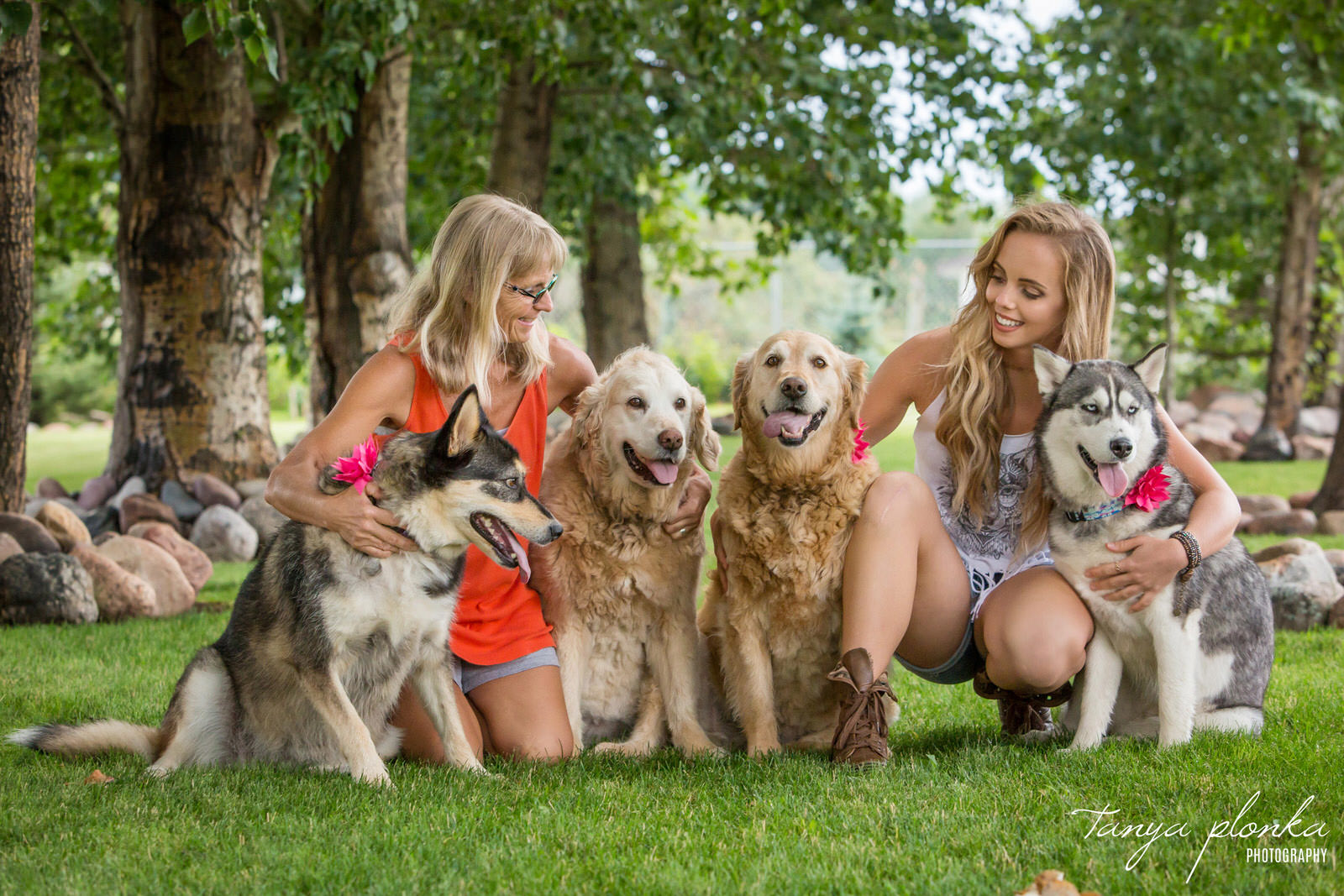 mom and adult daughter kneel on ground with their four large dogs